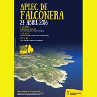 Aplec de Falconera