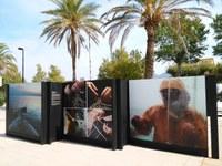 Exposició de Fotografies: Pinzellades en el temps