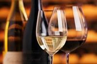 Tast de vins del Celler Masia Serra de Cantallops