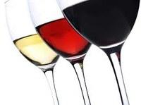 Tast de vins Masetplana de Garriguella