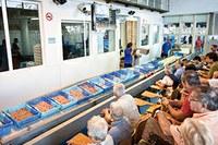 Visita guiada al port pesquer i la subhasta de peix