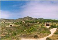 Búnquers de Punta Falconera