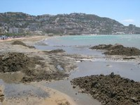 Els treballs a la platja de la Punta