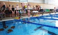 Grup nedadors europeus