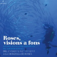 Roses, visions a fons