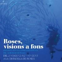 Roses, visions a fons