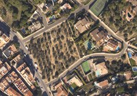Vista aèria de l'olivar