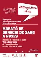 """A Roses, """"Comptem amb tu!"""""""