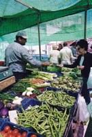 El nou reglament del mercat dels diumenges agilitza la seva gestió i s'adapta a la normativa de la Generalitat