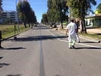 L'avinguda del Salatar serà d'un sol sentit de circulació a partir de dijous 21 d'abril