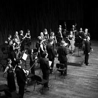 L'Orquestra de Cambra Catalana ofereix el Concert de Nadal 2014 a Roses