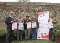 Roses es convertirà en un jardí botànic atapeït d'actes culturals i gastronomia durant la Fira de la Rosa el 27, 28 i 29 de maig